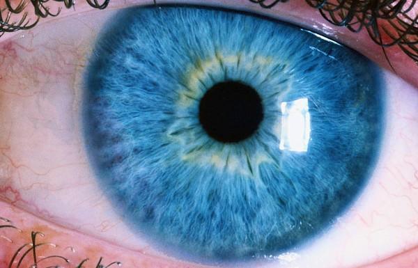 Akıllı Lens Uygulaması